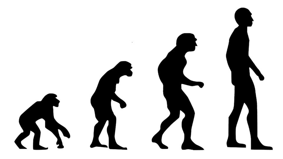 ewolucja pracy